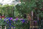 Коттедж в Ейске, на побережье Азовского моря, на недвижимость в Красноярске