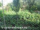 Темрюк Краснодарский край на Подмосковье